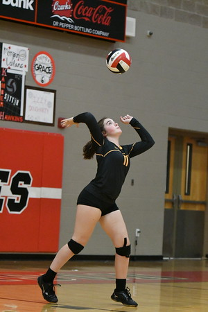 Volleyball - LHS JV 2018-19 - Branson (Low Res)