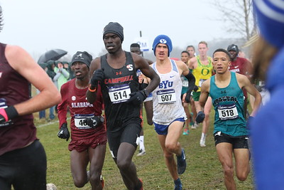 Men's 2.4K Mark - 2019 NCAA D1 XC Championships