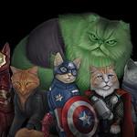 My Hero Cats artwork