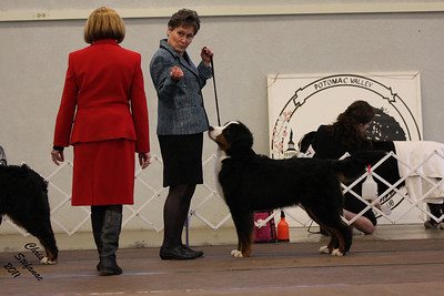 Winners Bitch PVBMDC Sunday 2/20/2011