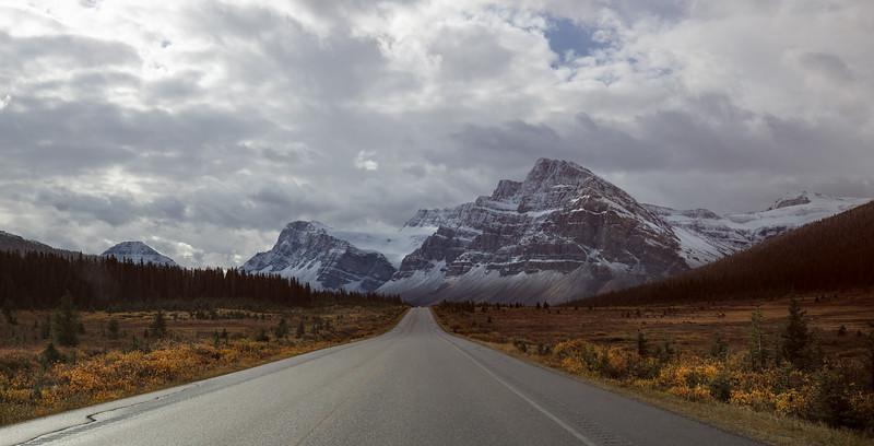 FB Icefields Road.jpg