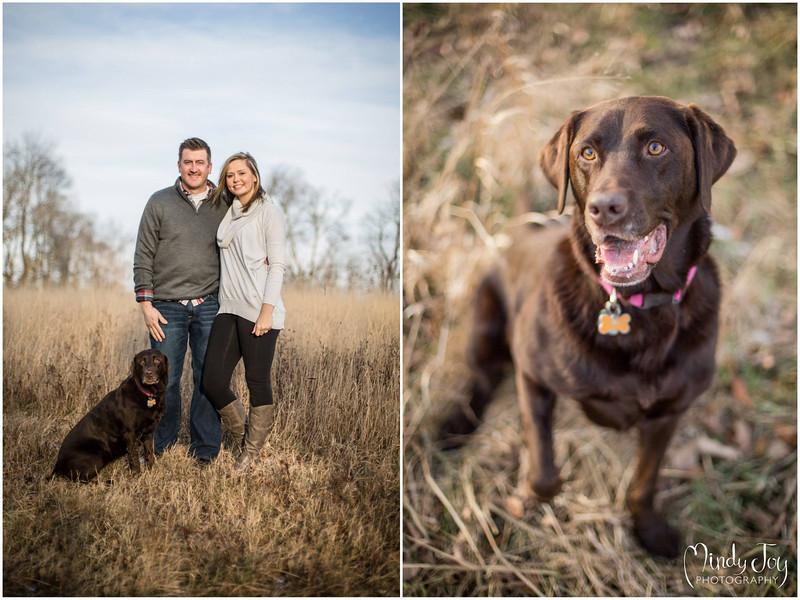 Mindy Joy Photography Rockford Family Portrait Outdoor Dog.jpg