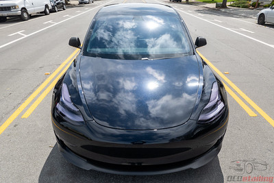 Tesla Model 3 - 3M Gloss Midnight Blue with PPF and Coating