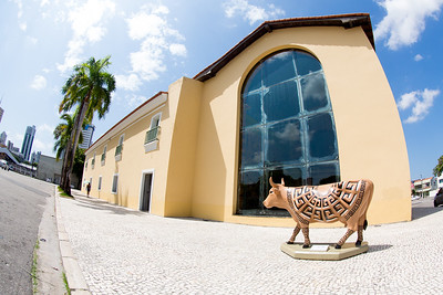 CowParade Belem, Brazil