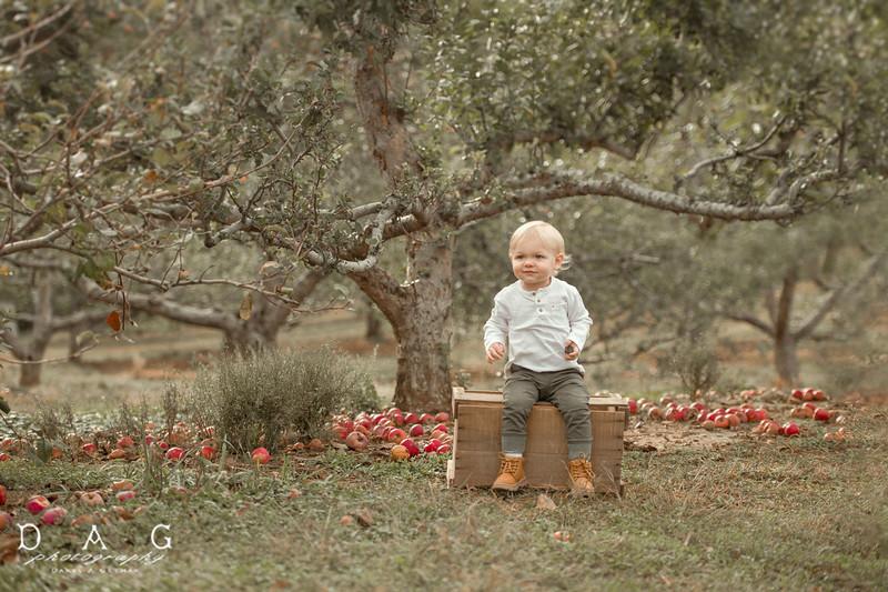 Everett's Orchard Adventure