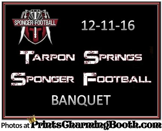 12-11-16 Sponger Football Tarpon Springs High School logo.jpg
