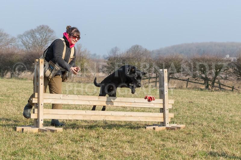 Dog Training Novice GD Feb2019-6003.jpg