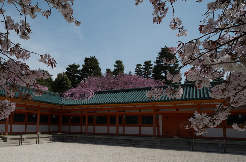 Kyoto Day 9 (31 of 317).jpg