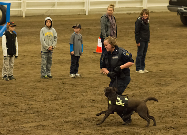 Canadian Police Canine Association Trials '16