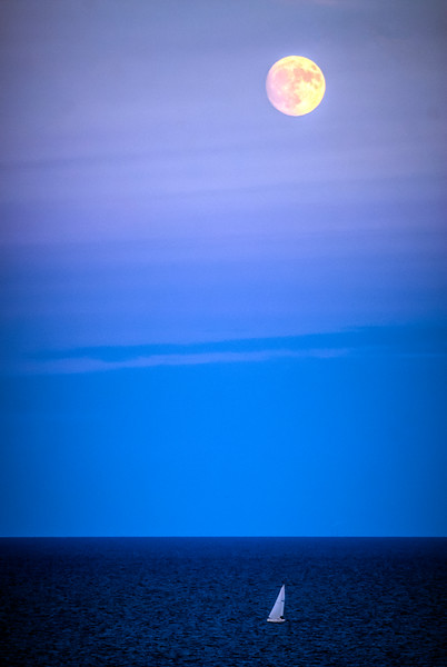 Its Not the Pale Moon.jpg