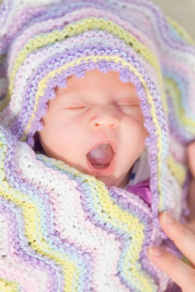 ELP0612 Baby Adeline Clermont Newborn 301.jpg