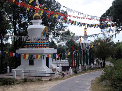 Palpung Sherabling Monastic Seat