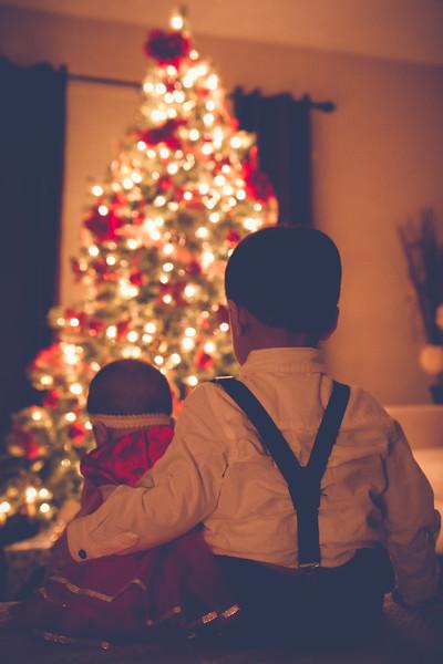 Christmas Portraits // Rojo Family