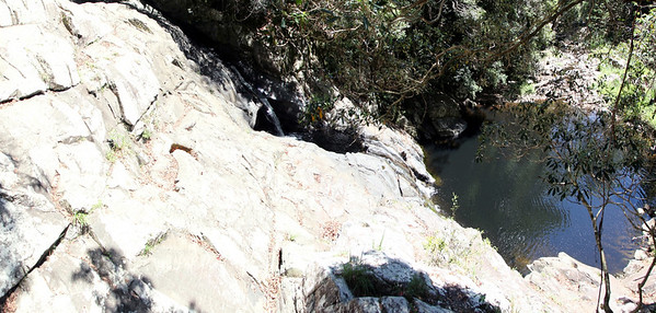 Springbrook National Park - Mount Cougal  Section