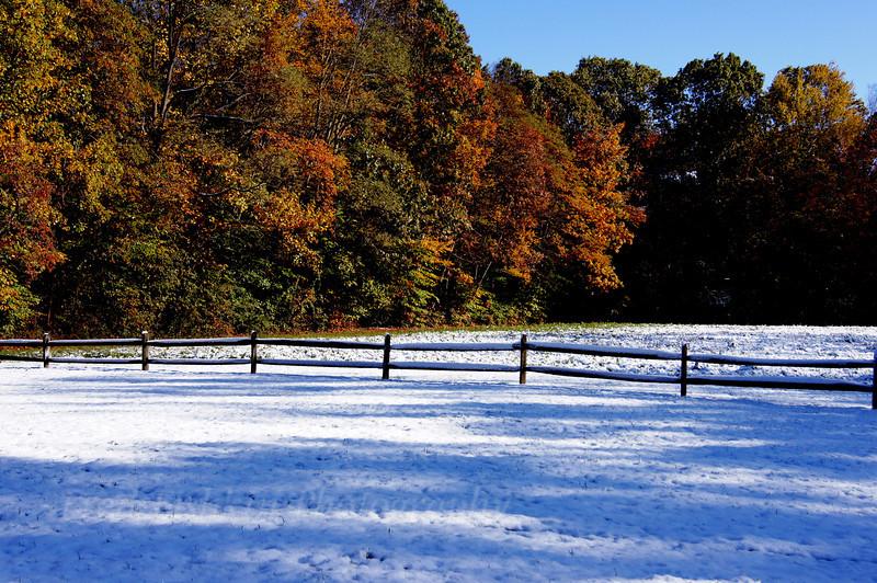 Clayton park.jpg