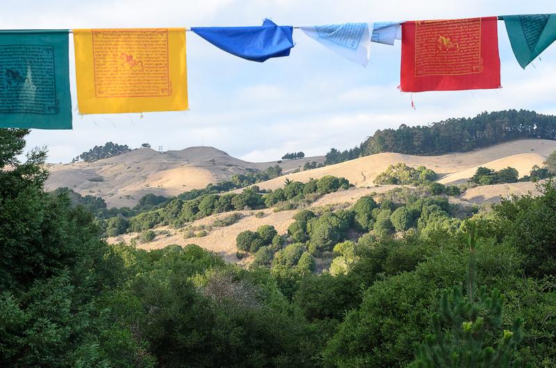 20130929-Gyuto-Gehlek_Rimpoche-new_center-7884.jpg