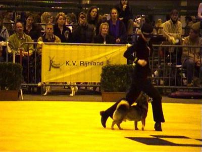 1 april 2006 Dogdancewedstrijd Leiden