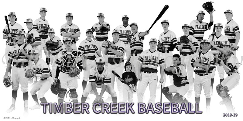 TCHS Baseball Team Banner 18-19