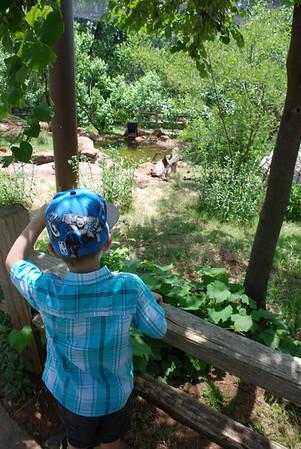 Memorial Day Weekend 2014 (OKC Zoo)