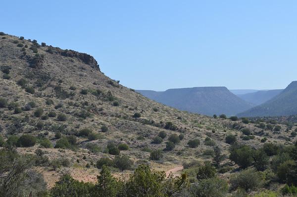 2014 Arizona