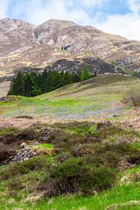 Sgorr nam Fiannaidh mountain in Glen Coe