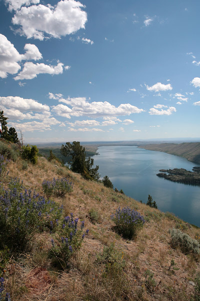 This was taken in the hills above Pinedale, Wyoming.  Beautiful country.