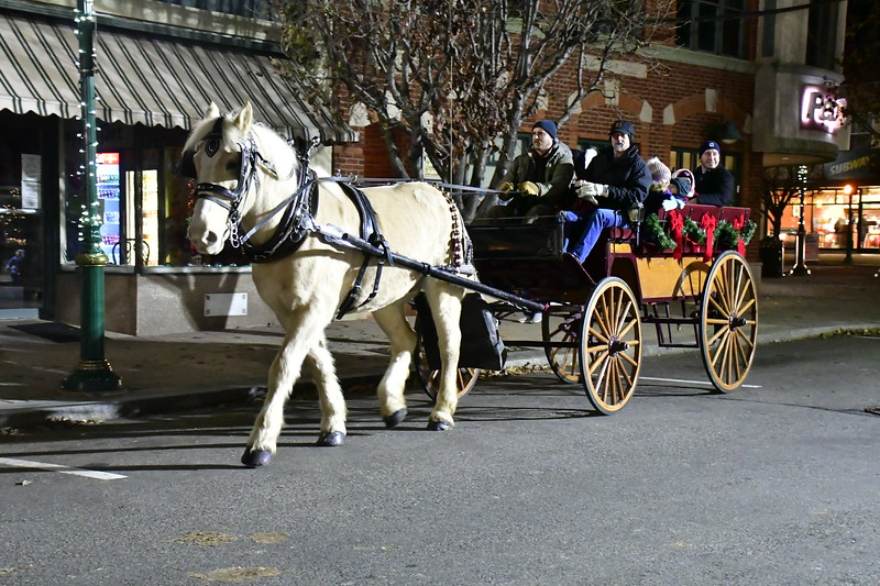 12/7/2018 Mike Orazzi | StaffHorse drawn wagon rides during White Christmas in the Community in downtown Southington Friday evening.