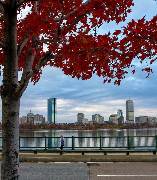 Boston Fall 2-2.jpg