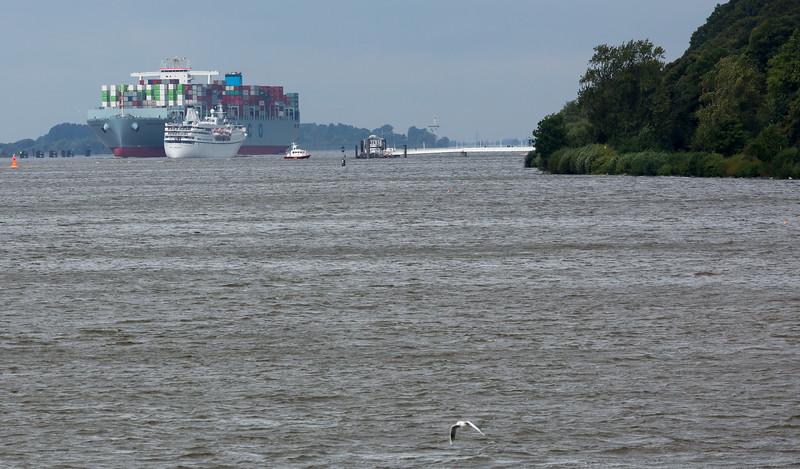 Containerschiff cosco Portugal auf der Elbe auf dem Weg Richtung Hamburg begegnet Kreuzfahrtschiff