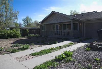 Denver Home - Landscaping - 2010-2012