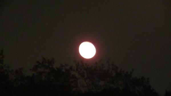 """November 15, 2016:  A few """"Super Moon"""" pics .  .  ."""