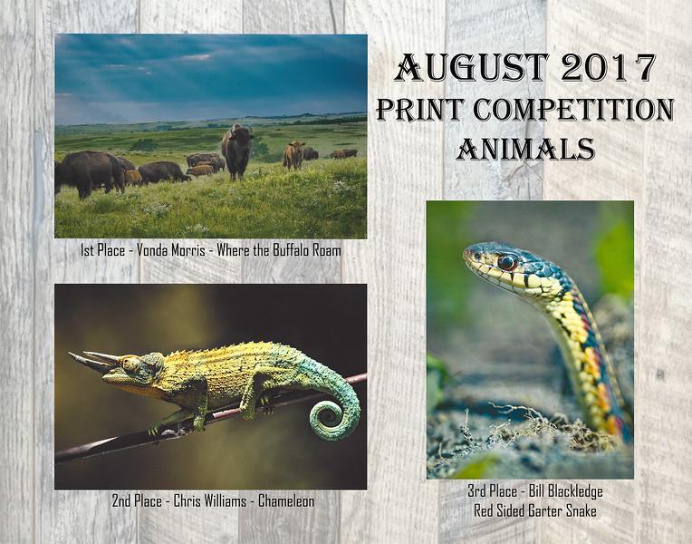 08 NPC August 2017 Print Competition.jpg