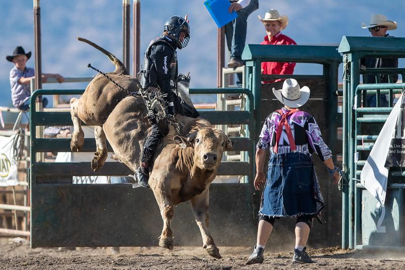 2019 Rodeo 5 (477 of 574).jpg