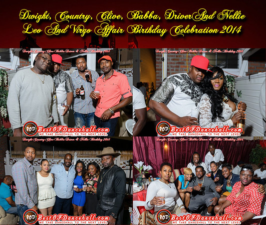 8-30-2014-BRONX-Dwight, Country, Clive, Babba, Driver And Nellie Leo And Virgo Affair Birthday Celebration 2014