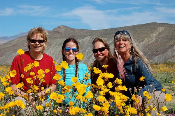 Anza Borrego Flower Hunt 3-9&10-19
