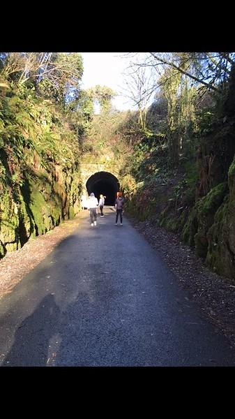 tunnel greenway.jpg
