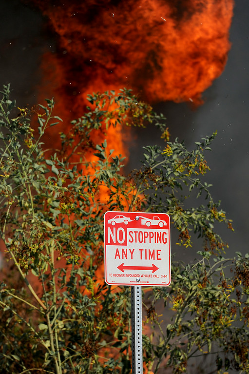 . A flareup along Burbank Boulevard during a brushfire in the Sepúlveda Basin, Friday, August 22, 2014. (Photo by Michael Owen Baker/Los Angeles Daily News)