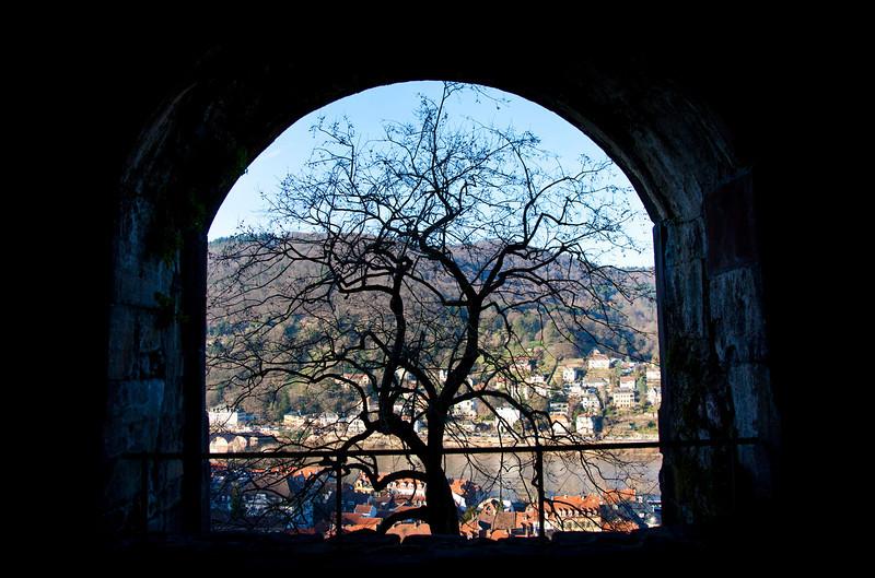 Castle window.jpg