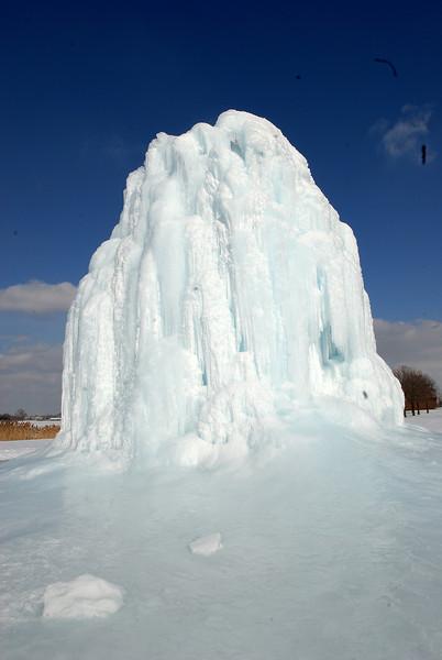 2/3/09 Belle Isle Ice Tree