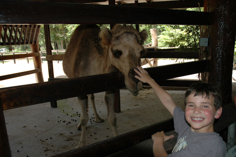 Copy of Alex and the camel.JPG