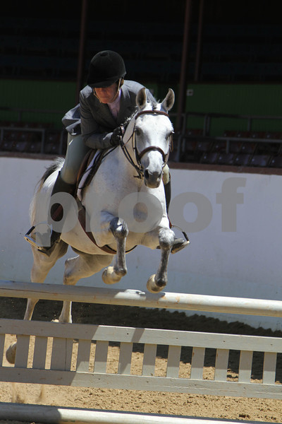 AHA Reg 2 Sport Horse PreShow 2012