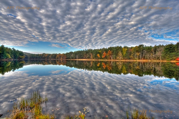 Nature - Landscapes & Wildlife