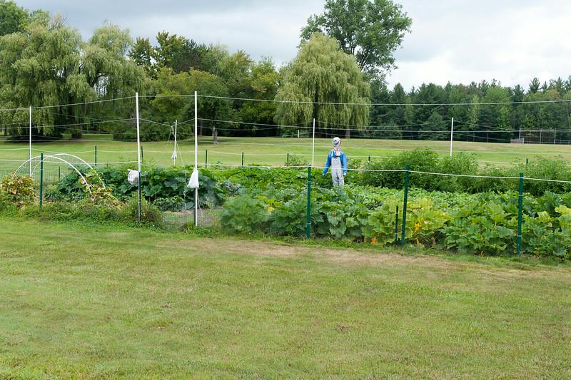20140912 ABVM Garden-1385.jpg