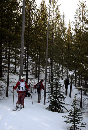 Storm Mountain, Kootenay/Banff NP <br>27.03.2008