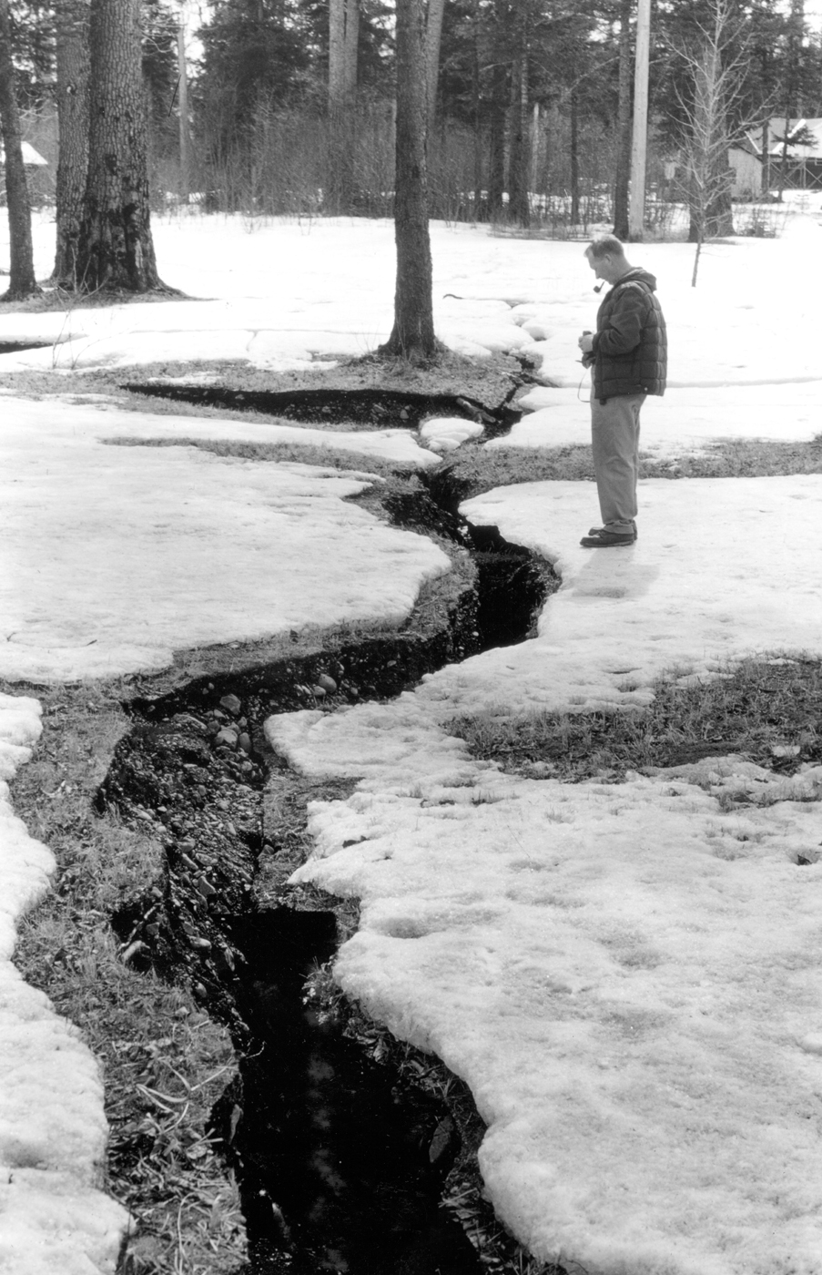 . Alaska Earthquake March 27, 1964. Ground fracture in the Forest Acres area in Seward. The fracture in the foreground is about 2 feet wide. Photo by R.D. Miller,  U.S. Geological Survey