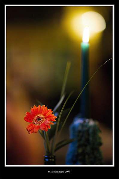 Pub flower and candle (68585199).jpg