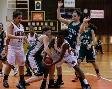 Girls Basketball JV Falls Church 2/5/13