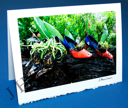Greeting Cards - Shoe Garden