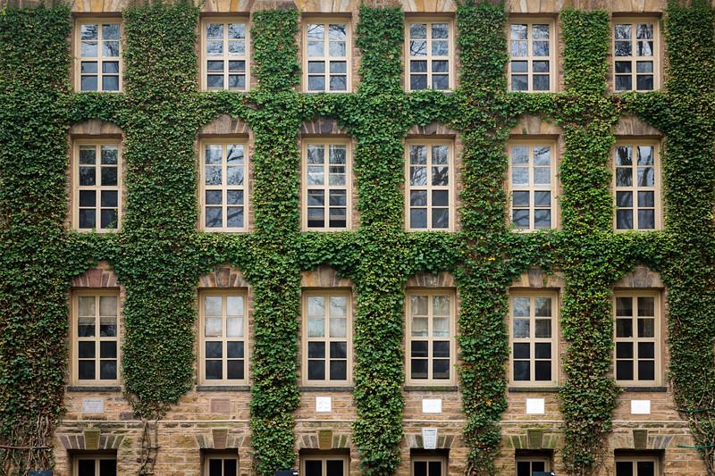Princeton U_Ivy 4-15-2017-4522.jpg