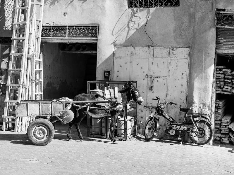Marruecos-_MM10396.jpg